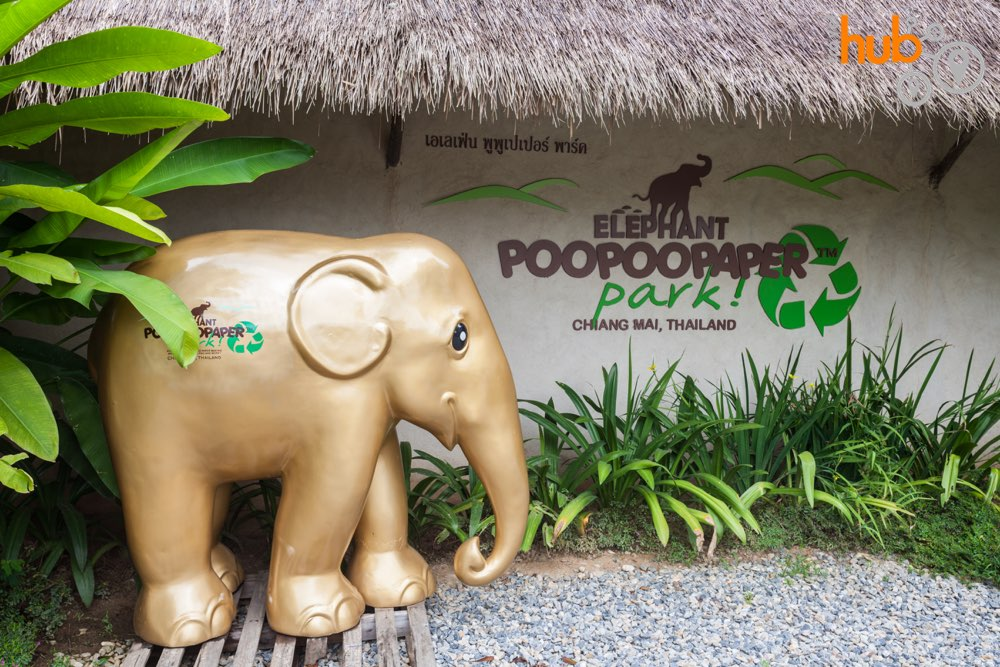 The elephant Poo Poo paper Park. See how elephant poo is transformed into papar