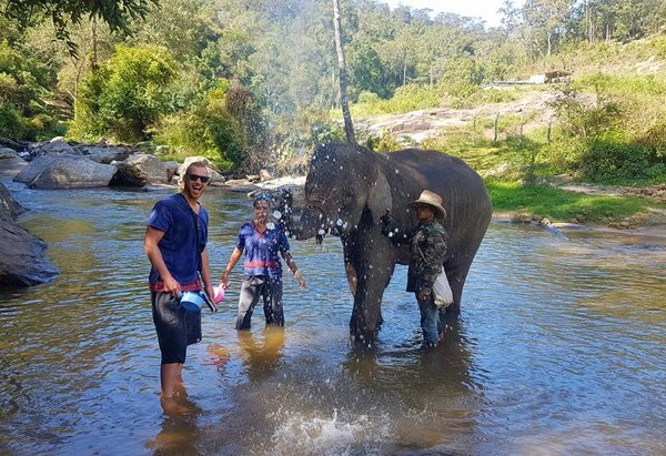 Elephant care with trekking