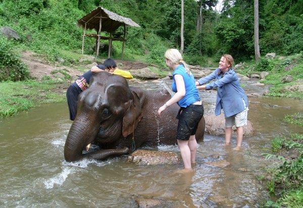 Chiang Mai special trekking
