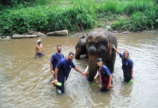 Chiang Mai elephant Mahout training